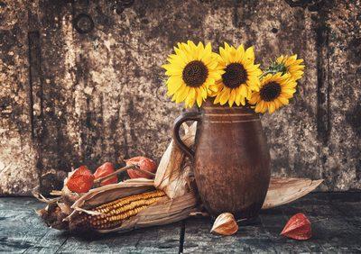 Seasonal Eating – Fall