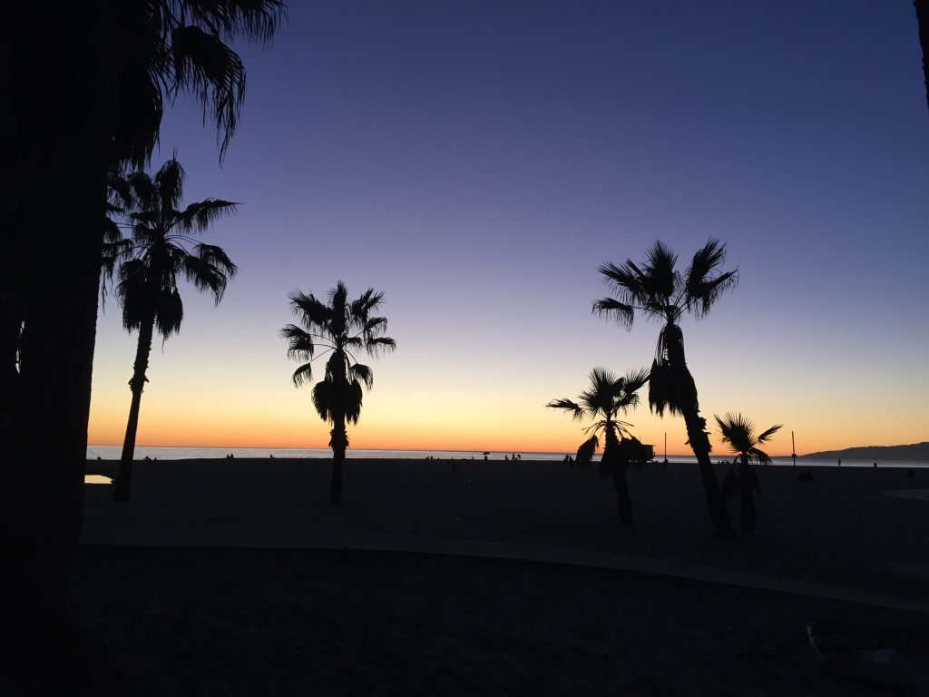 { Venice Sunset }