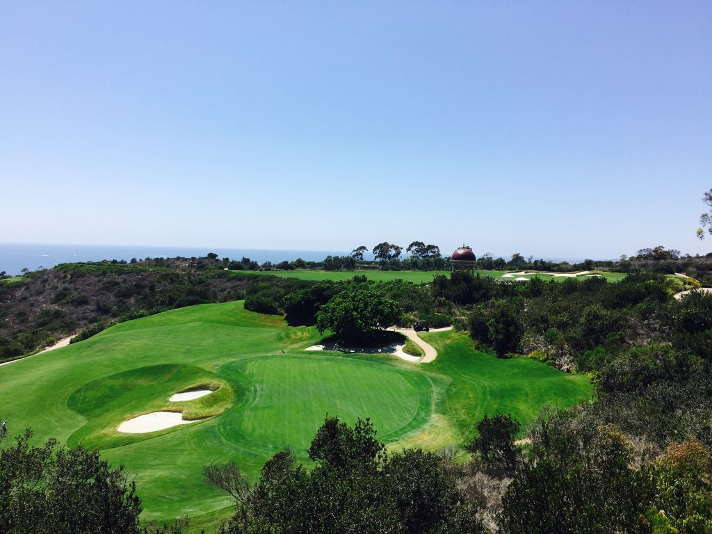 { pelican hill view }