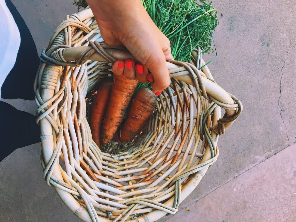 { garden harvest }