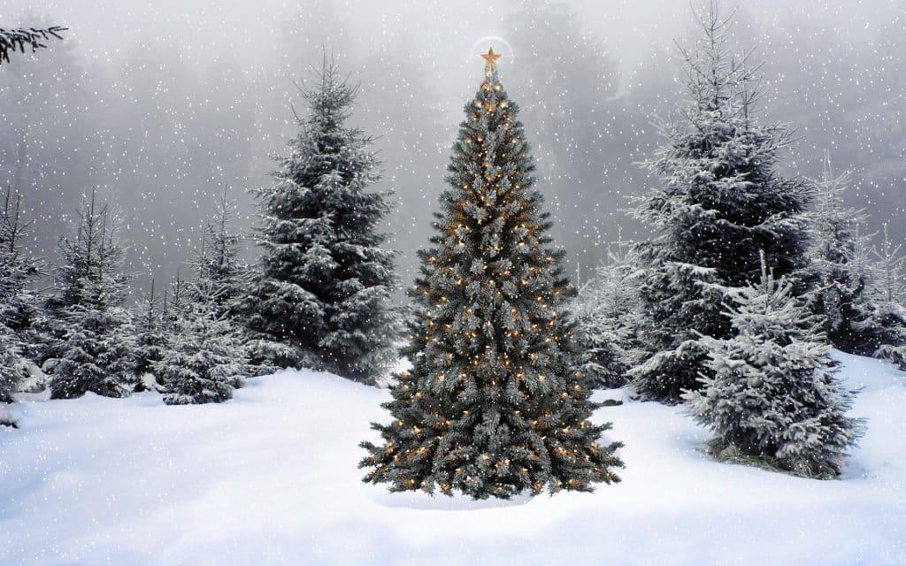 amazing-christmas-tree-lights-wallpaper